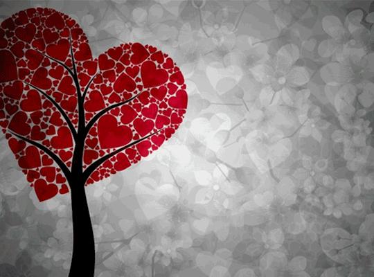 Tι σημαινει τελικα αγαπω;